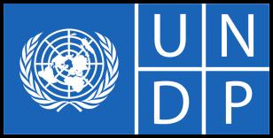 http://taratw.com/wp-content/uploads/2019/09/undp-logo-300x148.png